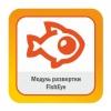 Модуль развертки FishEye